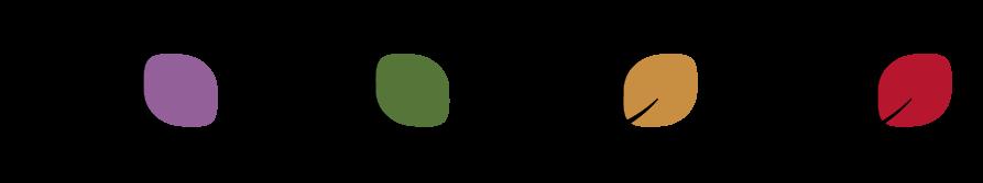 Caragana